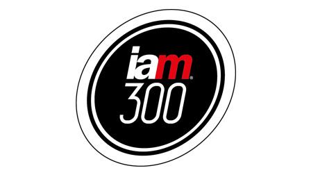 IAM 300 Logo